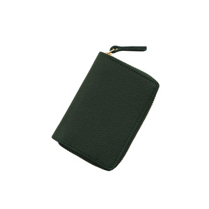 Be clue Coin Wallet green